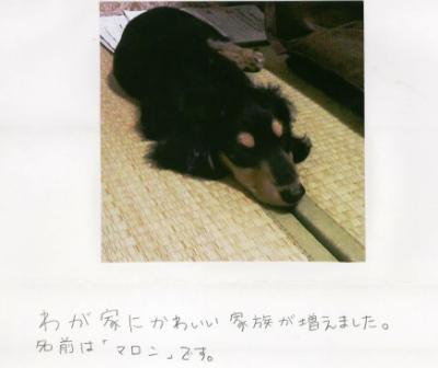 1_20130711.jpg
