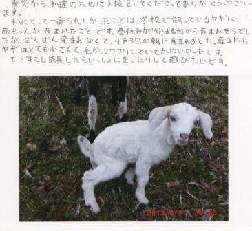 yagi_0522.JPG