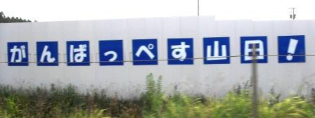 5_20130815.JPG
