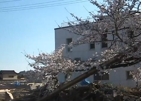 oofunato3_2011422.JPG
